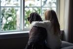 Výmena okien – pár odpovedí, ktoré by Vás mohli zaujímať