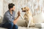 Ako skvalitniť život vášmu psovi? Jednoduché, sú tu luxusné potreby pre psy!