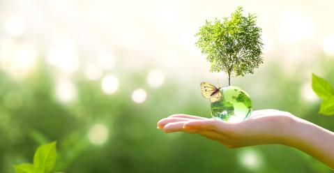 Benefity biokozmetiky, o ktorých by mal vedieť každý z nás
