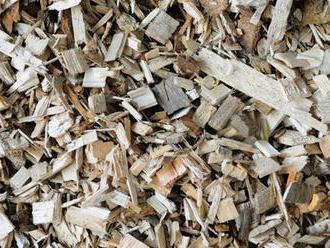 Budú výrobcovia tepla z biomasy žiadať odškodné? ÚRSO prehral súd