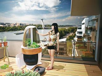 Na slovenských balkónoch možno pribudnú vajíčkové záhradky