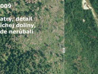 Autor máp drancovania slovenských lesov už pomohol zachrániť dvoch ministrov a Pezinok pred skládkou
