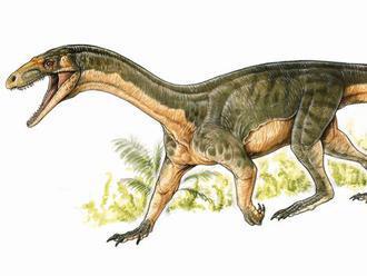 Dávny dinosaurus chodil ako krokodíl