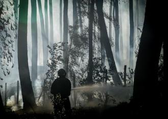 Hasiči bojujú s lesným požiarom neďaleko Nice