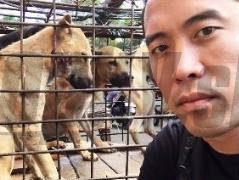 Kontroverzný Vietnamec pobúril Slovákov: FOTO, Rady ako zabíjať a naporcovať psov