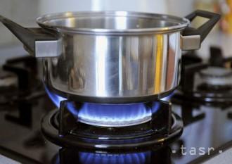 V Žiari nad Hronom samospráva spustila zber kuchynského odpadu