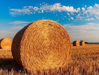 SPPK: Pasívne saldo agroobchodu SR za január až jún medziročne kleslo o 7 %