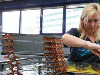 Sociologička Monika Čambáliková: Na záujmy žien majú dohliadať odbory