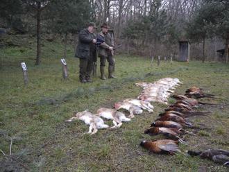 Pri poľovačke omylom zastrelili 29-ročnú ženu