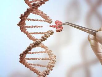 Nový projekt má dekódovať DNA všetkých druhov živočíchov a rastlín