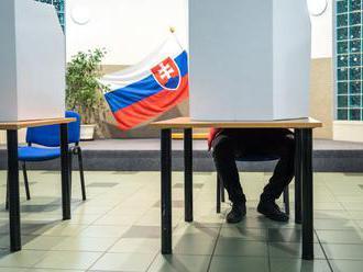 Pokojné, ale nie bez problémov. Šéf komisie hodnotil priebeh volieb