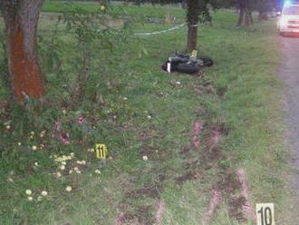 Niekto sa pomstil za smrť motorkára. Vyrúbal desiatky stromov pri ceste