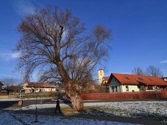 Obec Švábovce si pripomína 750.výročie vzniku