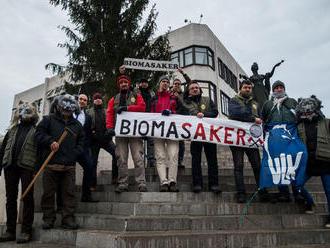 Opozícia a Vlk pretlačili zákaz biomasakra aj napriek odporu drevára Žigu