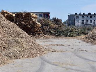 Opozícia uspela, kvalitné drevo sa už nebude spaľovať ako biomasa