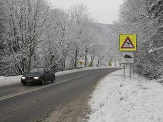 Počasie trápi vodičov: Silné sneženia a poľadovica, meteorológovia vydali výstrahu