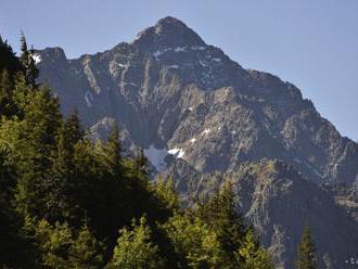 Fungovanie štátneho podniku Lesy SR sa neupraví, návrh OĽaNO neprešiel