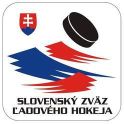 Na organizáciu MS v hokeji 2019 schválila vláda 3,5 mil. eur