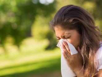 V ovzduší na Slovensku prudko vzrástlo množstvo peľu