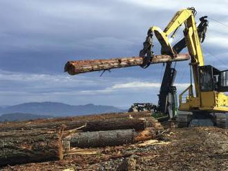 Poľsko nadmernou ťažbou dreva Bielovežskom pralese porušilo zákon EÚ