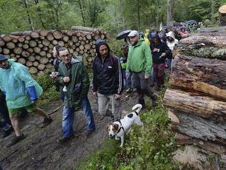 Ťažba v stáročnom poľskom pralese porušila zákon, povedal európsky súd. Môže tým zastaviť výrub aj n
