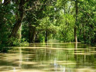 SaS chce vyhlásiť Žitný ostrov za chránenú vodohospodársku oblasť