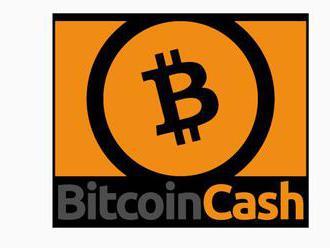 Kelly: Bitcoin cash musíte mít. těžaři možná založí fond na rozvoj jeho využití