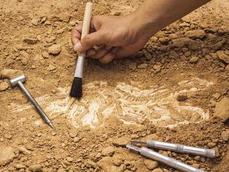 Mimoriadny objav v Šamoríne: Archeológovia odkryli pozostatky unikátnej kostnice