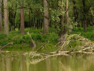 Vláda schválila prvý zákon na ochranu vody