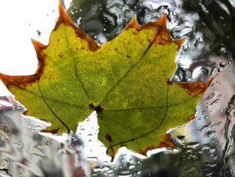 Hoci padajú už listy na javore, bude slnečno, prehánky len na severe