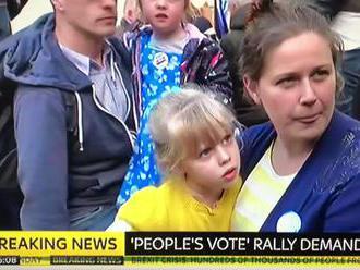 Britská demonstrantka vysvětluje podstatu demokracie v klipu, který zhlédly 3 miliony lidí
