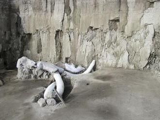Antropológovia našli pasce na mamuty staré 15-tisíc rokov