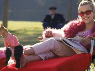 Legally Blonde 3: Release date, plot, cast, rumors and everything else we know     - CNET
