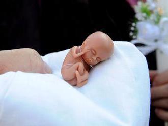 Poslanci rokovali o potratoch, od niektorých zmien upustili