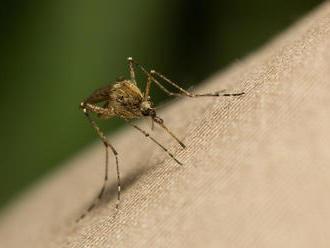 Ako klin klinom. Liečba smrteľnej choroby pomocou malárie môže fungovať