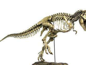 Zberatelia dinosaurích fosílií preplácajú múzeá