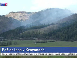 Pri obci Kravany horí lesný porast, zasahuje takmer stovka hasičov