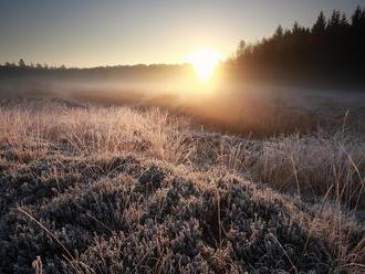 Zlá správa pre záhradkárov: Varovanie, TU treba počítať s prízemnými mrazmi