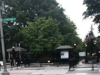 Kachna s kachňátky cestou do Bílého domu