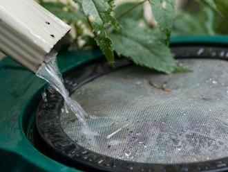 Veľký Krtíš chce zbierať a využívať dažďovú vodu počas suchých dní, zaplatiť by to mali eurofondy