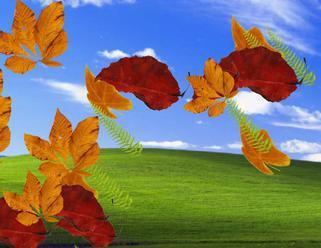 Básničky o jeseni