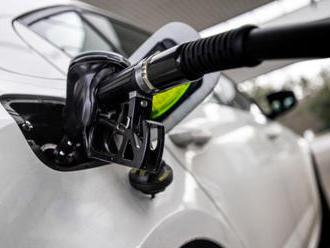 Analytik: U moře jsou pohonné hmoty dražší než v Česku