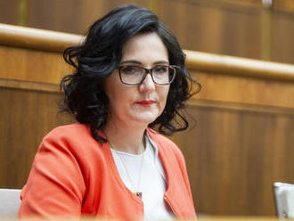 M. Lubyová: Zmenu školského roka pre vysoké teploty rezort neplánuje