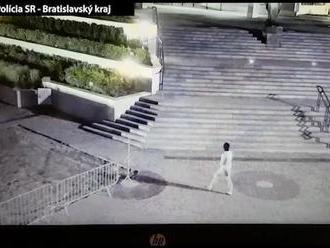 Naháč sa prechádzal v Bratislave pred parlamentom. Polícii to vtipné neprišlo