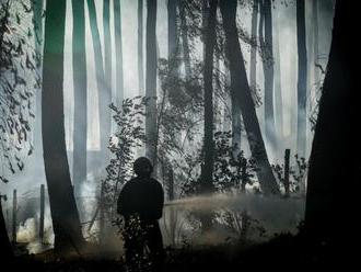 Hasiči na juhu Talianska bojujú s požiarmi, hlásili aj jednu obeť