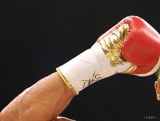 Vargas zdolal Kamedu a obhájil titul organizácie WBC