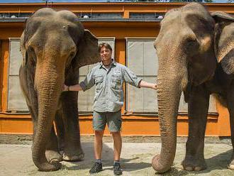Péčí o slony jsem si splnil dětský sen