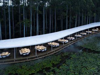 Gastronomická oáza. Restaurace uprostřed eukalyptového lesa vypadá jako bílá pára