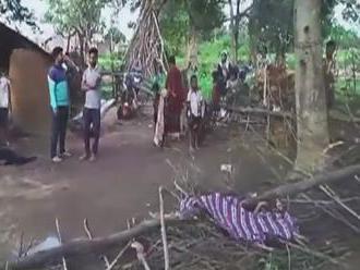 Desivý útok slona: Zviera zbúralo stenu, z domu vytiahlo dieťa a zabilo ho
