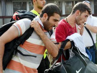 V prvom polroku 2019 požiadalo v Maďarsku o azyl 265 cudzincov